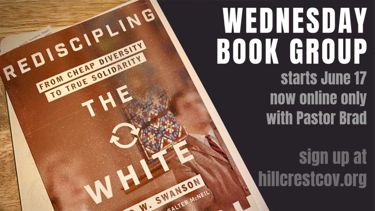 Rediscipling the White Church online book group