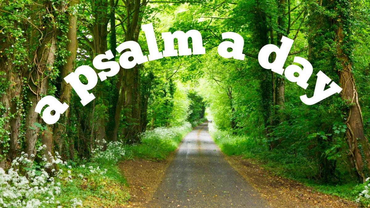a-psalm-a-day