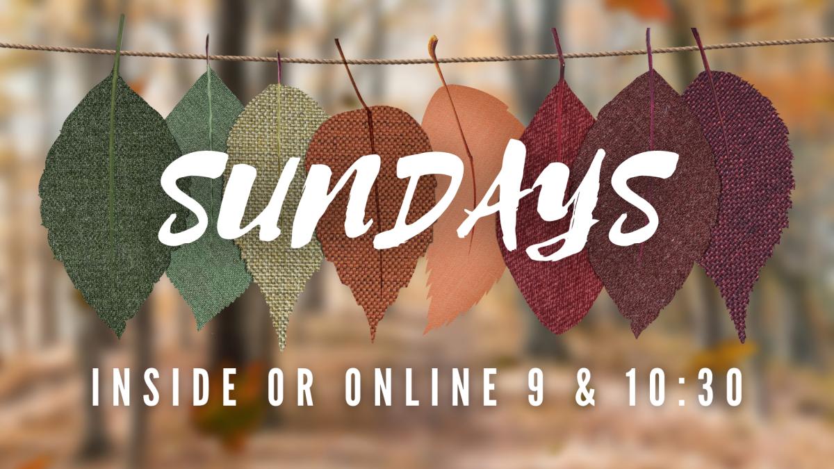 Sundays! Inside/Online at 9 or 10:30 AM